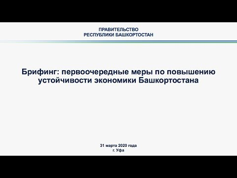 Министр промышленности и энергетики Республики Башкортостан Александр Шельдяев провёл онлайн-брифинг, посвященный мерам по повышению устойчивости экономики
