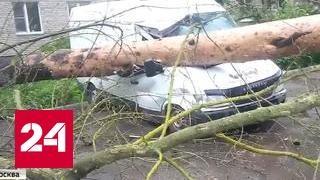 Быстрый, сильный и недолгий: ураган прошел по Москве с запада на восток