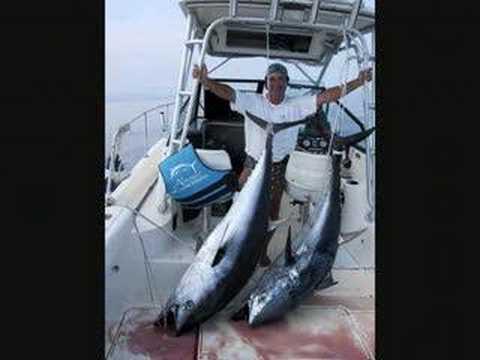 Attrezzature per navigatori da pesca