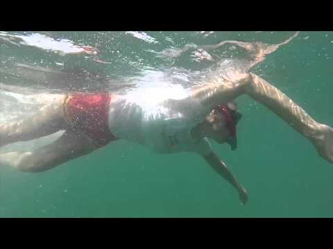 Swimming with whale sharks in Isla Holbox Mexico