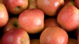 #DIY Homemade Applesauce