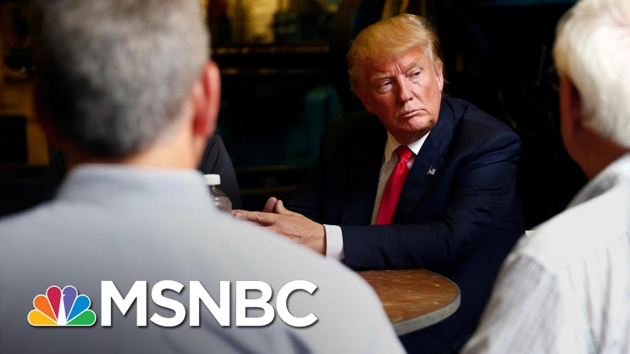 President Donald Trump Defends Immigration Ban As 'Success'   MSNBC thumbnail