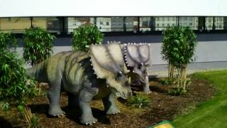 preview picture of video 'Visit to the Prague's dinopark (April 2012)'