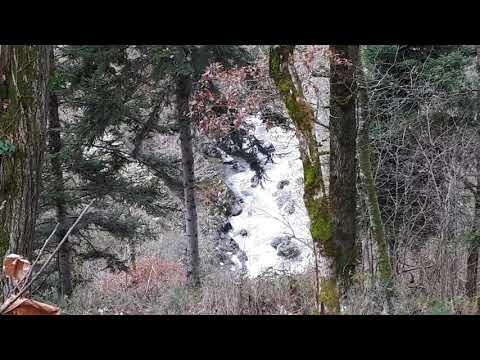 rivière en hiver dans l'Aveyron,