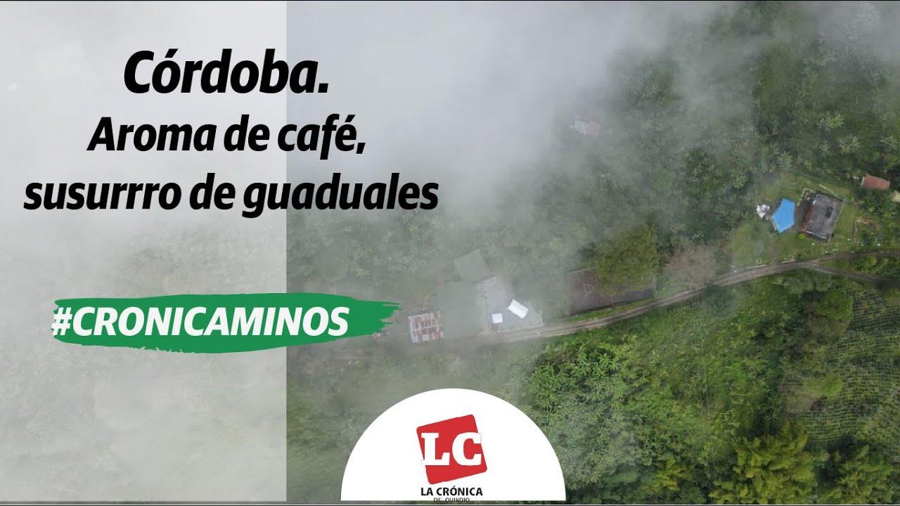 #Cronicaminos | Córdoba. Aroma de café, susurro de guaduales