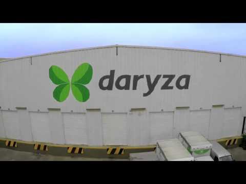Daryza Hoy