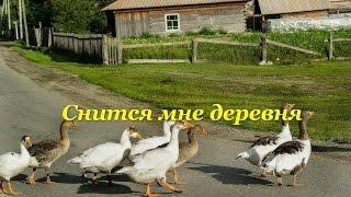 песня---Снится мне деревня