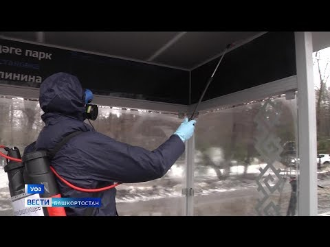 В Уфе начали дезинфекцию остановок и пассажирских автобусов