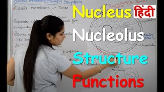 Nucleus Structure & Functions in Hindi | Nucleolus | Nuclear Membrane | Nucleoplasm