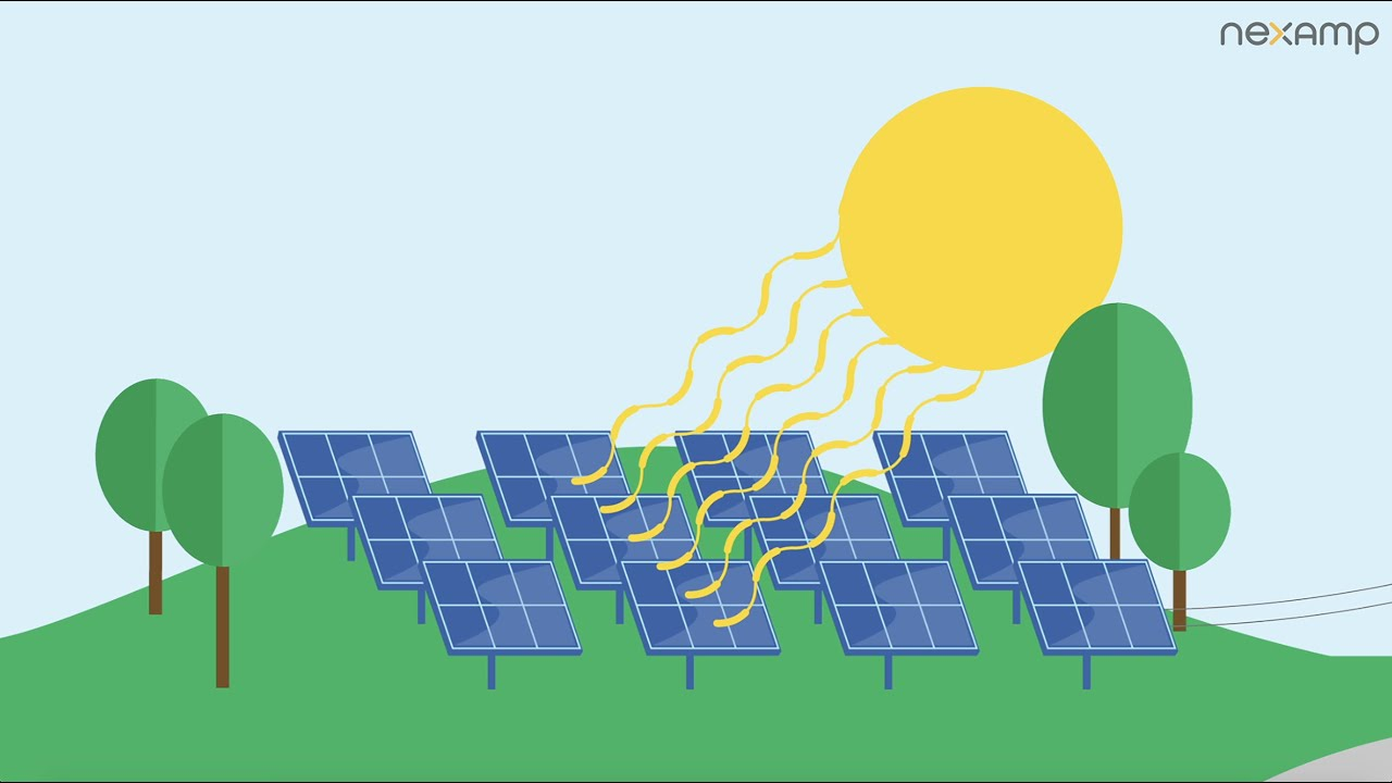 See how community solar from Nexamp works.