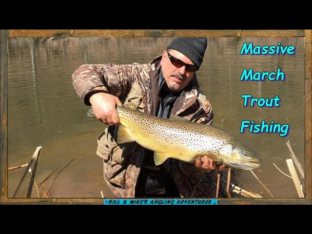 Massive March Trout Fishing