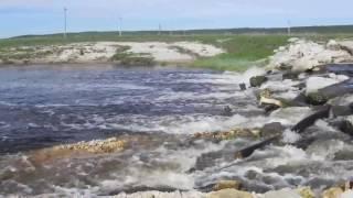 Река леметь в ардатове рыбалка