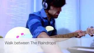 Donald Fagen - Walk between The Raindrops (Bass Cover)
