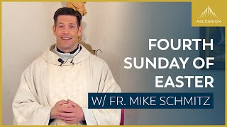 Fourth Sunday of Easter – Mass with Fr. Mike Schmitz