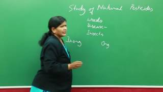 Study of Natural Pesticides
