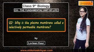 Q2 Why is the plasma membrane called a selectively permeable membrane?
