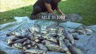 Рыбалка в калужской области форум брынь