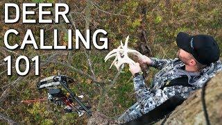 Deer Calling Tips | Rattling and Grunting To Bucks