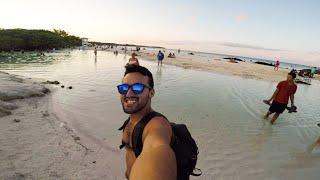 5 Cosas Que Hacer En Playa Del Carmen Con Poco Dinero En 1 Día (25USD)  @sebitastrip