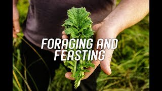 Foraging and Feasting - A wonderful video by the Recipe hunters.