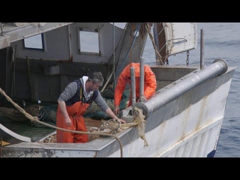 Gioco su una pesca di noki