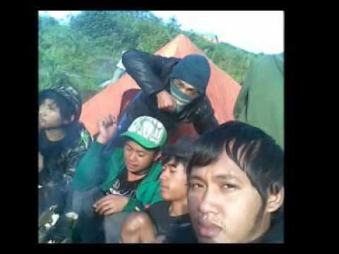 the join reggae_terima kasih teman