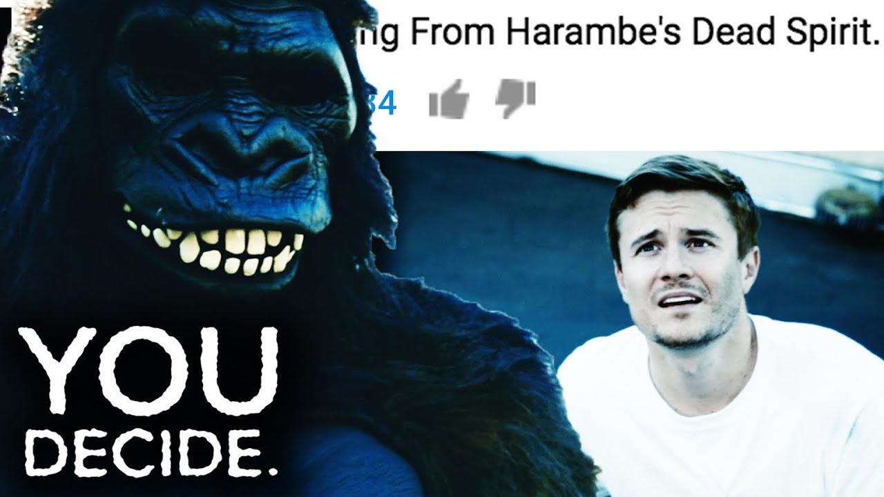 What Is Going On With Shia Labeouf And Harambe? You Decide. Ep. 2 thumbnail