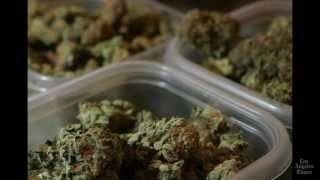 Headline: California Supreme Court vote gives cities right to ban pot shops