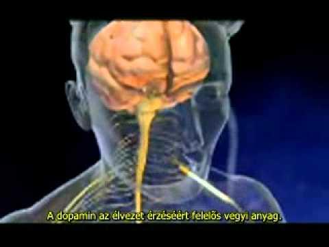 Hogyan lehet fájdalommentesen leszokni a dohányzásról népi gyógymódokkal