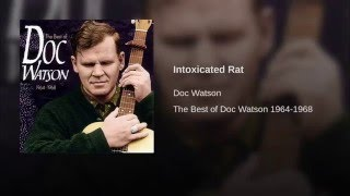 Intoxicated Rat