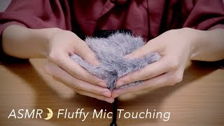 [ASMR] Fluffy Mic Touching (Windscreen) Ear Cleaning, Brushing [No Talking] DR-40