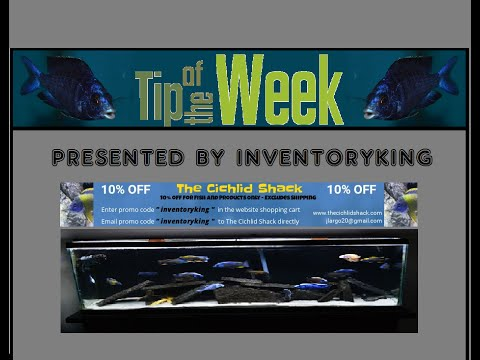Tip of the Week #3 | How to TEST ROCKS For Your Aquarium | Safe or Unsafe