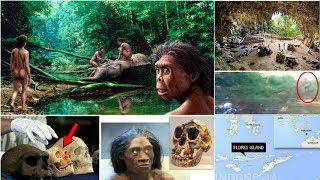 挑戰新聞軍事精華版--「哈比人」真的存在! 印尼發現遺骸可能是祖先