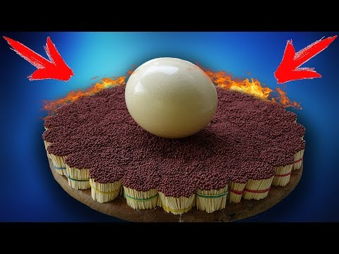 IS IT POSSIBLE TO COOK AN OSTRICH EGG WITH 50 000 MATCHES?!?