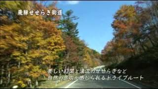 (動画)飛騨高山の紹介 秋