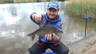 Рыбалка на фидер в калининградской области