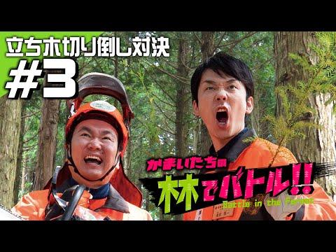 人気芸人「かまいたち」が日本一アツい島根の森に挑む!立木切り倒し対決!!