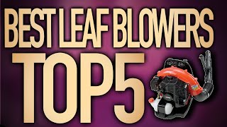 ⭐⭐⭐⭐⭐ Best Leaf Blowers in 2020