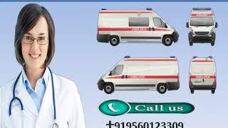 Life-Sustaining Road Ambulance Service in Muzaffarpur and Bhagalpur
