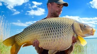 Catch Carp Hungary   Lake Balaton I.