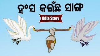 Hansa Kainchha Sanga ହଂସ କଇଁଛ ସାଙ୍ଗ Odia Moral Stories For Kids | Sidharth TV
