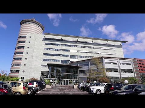 Video Wisselweg 33 Almere Stad