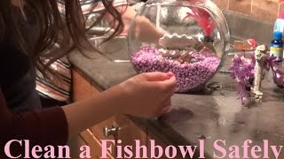 How to Clean a Fishbowl Safely & Quick