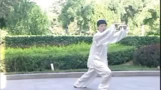 簡化24式太極拳高探馬~左蹬脚。。。宗維潔zongweijie
