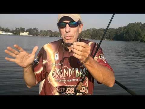 EARLY FALL BASS FISHING TIPS JIGS AND PLASTICS