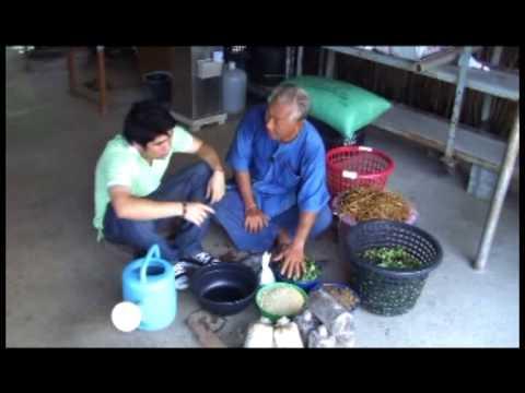 Solidolovuyu ซื้อครีมสำหรับโรคสะเก็ดเงินในร้านขายยาของกรุงมอสโก