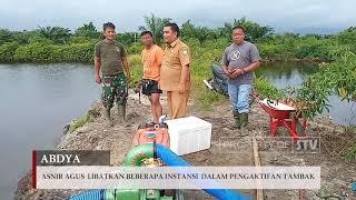 SEURAMOE TV - DKP Abdya Fungsikan Lima Hektar Tambak Ikan Air Payau