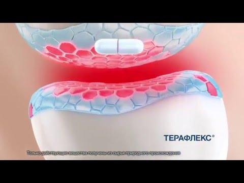 """Реклама Терафлекс - """"Продлите молодость суставов!"""""""