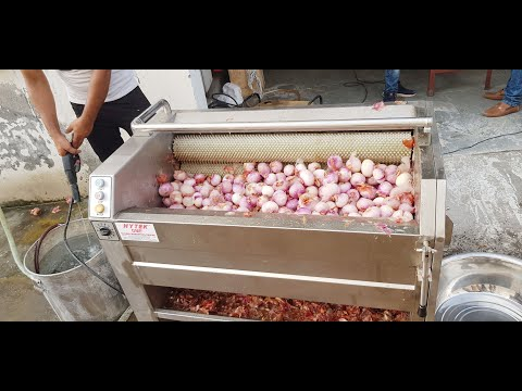 Onion Washing Machine / Onion Washing and Peeling Machine / Onion Peeler