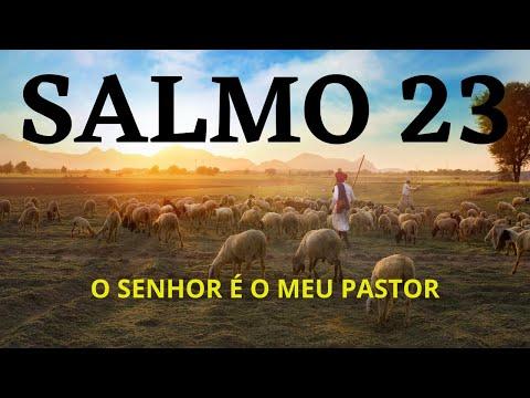 SALMO 23 - O SENHOR  O MEU PASTOR